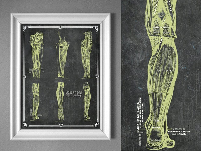 Anpassbare grau Anatomie Hip Beinmuskulatur Wand Dekor | Etsy