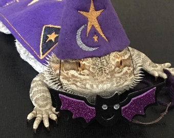 Bearded Dragon Wizard Hat and/or Cape and/or Cape and Hat Costume