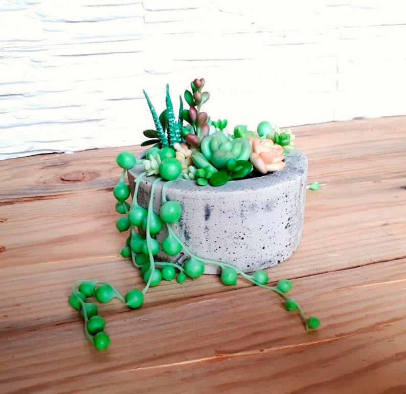 how to display succulents 30 cute examples.htm polymer clay succulents handmade succulents garden with etsy  polymer clay succulents handmade
