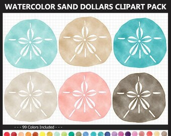 Sand Dollar Template Etsy