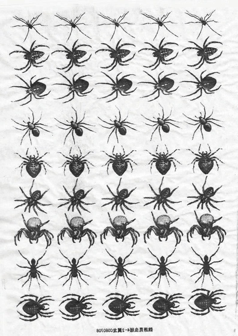 Ceramic Decal  Insects 1 Black