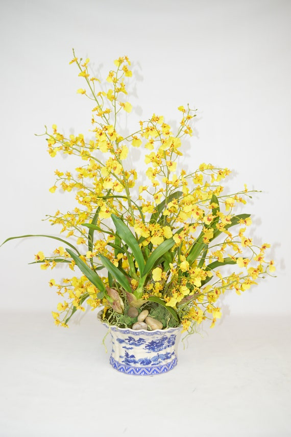 Yellow Oncidium Orchids In Scalloped Vase The French Bee Etsy
