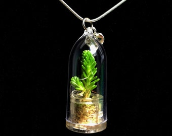 Wearable Succulent Necklace / Mini Ever Green Succulent Terrarium Necklace / Miniature Terrarium / Nature Jewelry Necklace