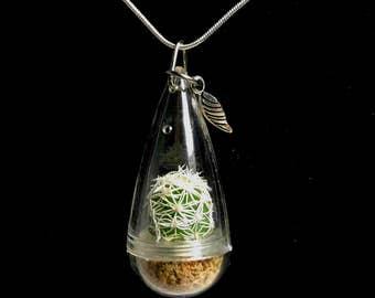 Cactus Necklace / Moonlight Cactus / Terrarium Necklace / Miniature Terrarium / Wearable Cactus / Live Cactus Jewelry