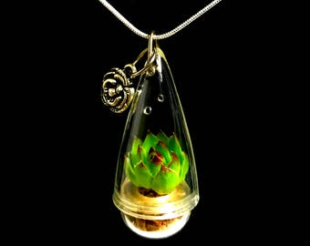Live Succulent Necklace / Mini Lotus Succulent Terrarium Necklace / Miniature Terrarium / Exotic Succulent Plants / Perfect Gift for Her
