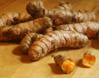 8 Healthy Fresh Turmeric Roots ,Whole,Raw ,Organic . Juice it,brew it or plant it