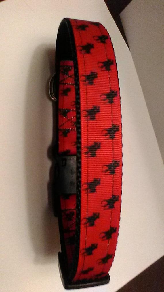 Poneys à la main collier de chien noir sur fond rouge