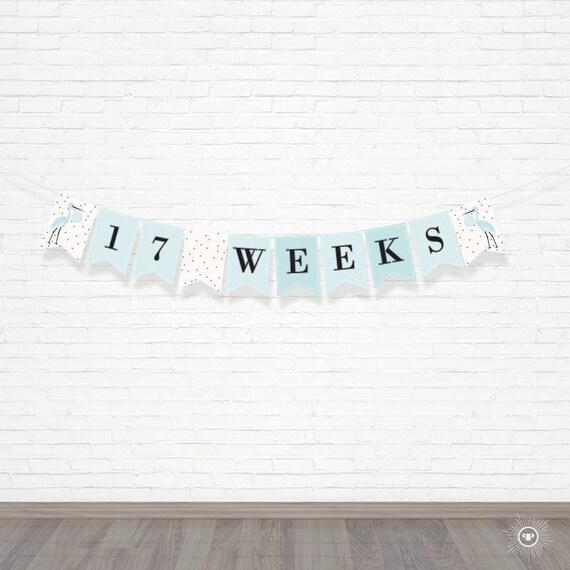 Blue Pregnancy Banner - Printable Week By Week Banner - Maternity