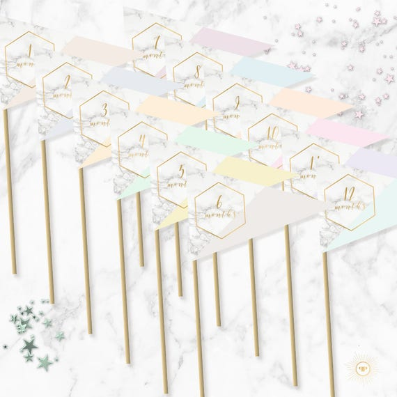 marble and pastel monthly flags printable milestone photo prop