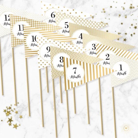 gold monthly milestone flags printable milestone photo prop
