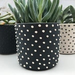 READY TO SHIP - Studded handmade ceramic succulent planter - small pottery planter - modern ceramics - minimalist pottery