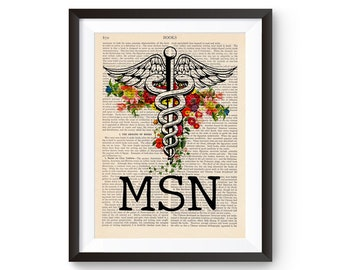 Nurse MSN Porcelain Ornament Gift Nursing Masters of Science Caduceus Red