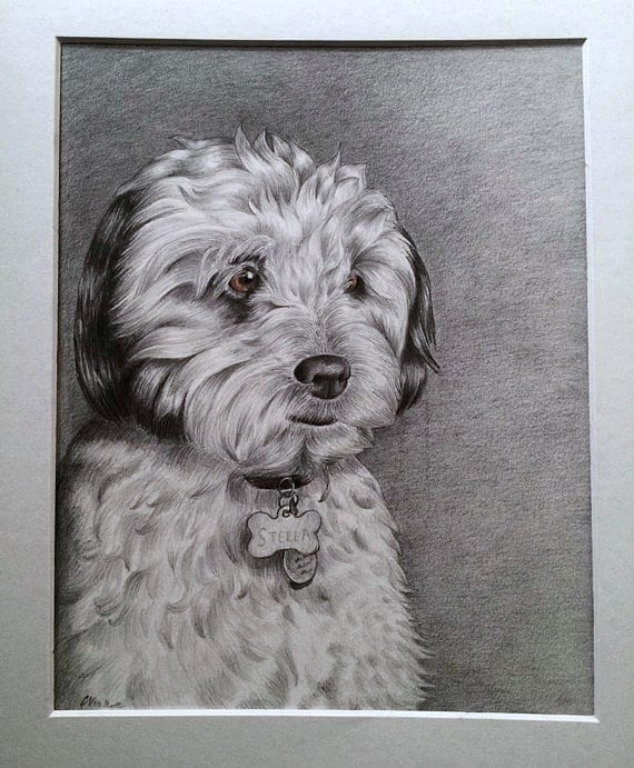 Custom Pet Portrait / Drawing - I will draw your dog, cat, or favorite animal! Perfect Holiday Gift or Memorial