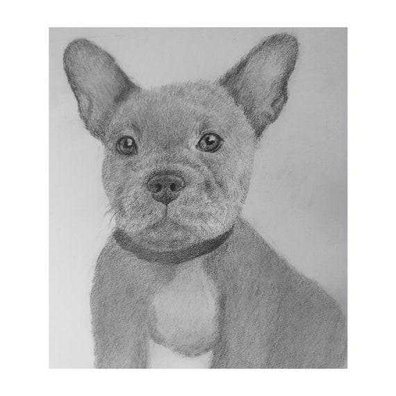 """Mini Custom Pet Portrait: 5 x 5"""""""