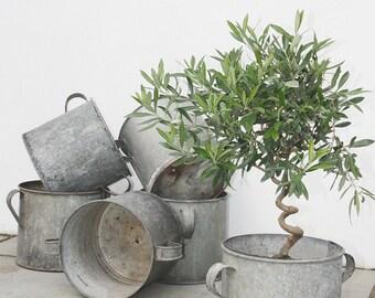 Vintage Zinc Garden Planters, Unique, Antique, Plant Pot, Metal, Planters, Farmhouse Decor, Rustic Home Decor, Flower Pot, Gift, Kitchen