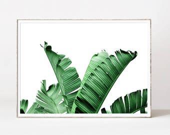 Palm leaf, banana leaf, botanical print, banana leaves, leaf print, banana leaf art, palm print, botanical art, tropical leaf, palm prints