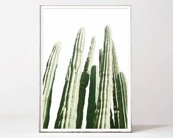 Cactus print, cactus poster, trending wall art, cactus photography, cactus decor trend, cacti print, desert art, botanical prints, cacti art