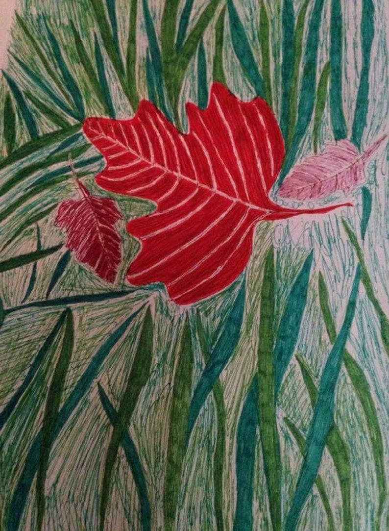 8 x 10 Maple Leaf On Lawn Print image 0