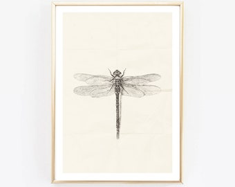 9f9cccf34 Dragonfly Print, Black and White, Insect Print, photo,Modern Art,Feather  Fine Art, Scandinavian Wall Print, Scandinavian decor, monochrome
