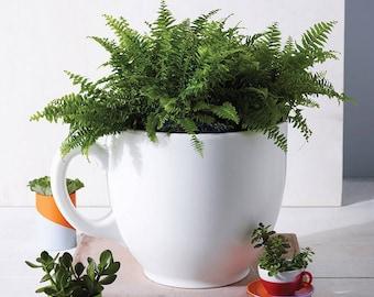 Tea Cup Planter - Oversized Alice In Wonderland Inspired Garden Planter