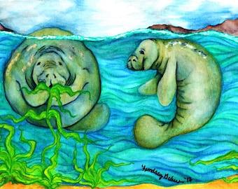 Manatee watercolor painting
