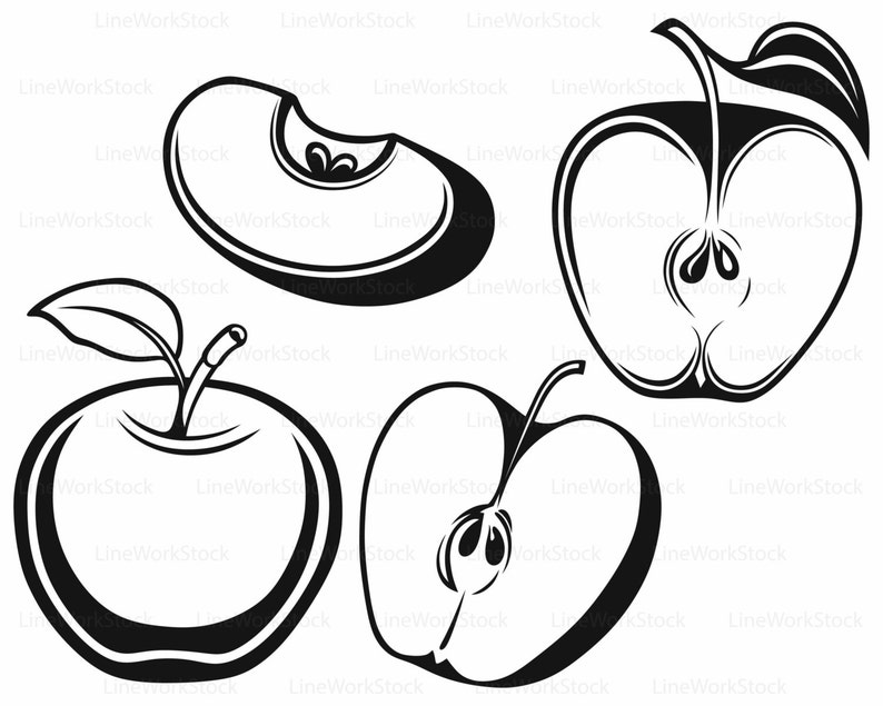 Apple svg/clipart/fruit svg/apple silhouette/apple cricut ...