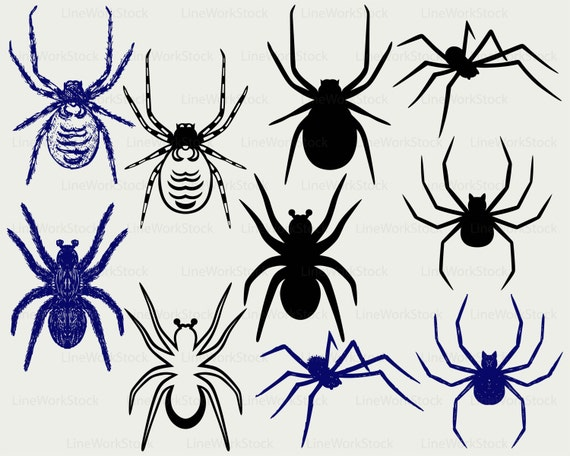 Spider Svgtarantula Spider Clipartspider Svgspider Silhouetteinsects Cricutspider Cut Filesclip Artdigital Downloaddesignssvg