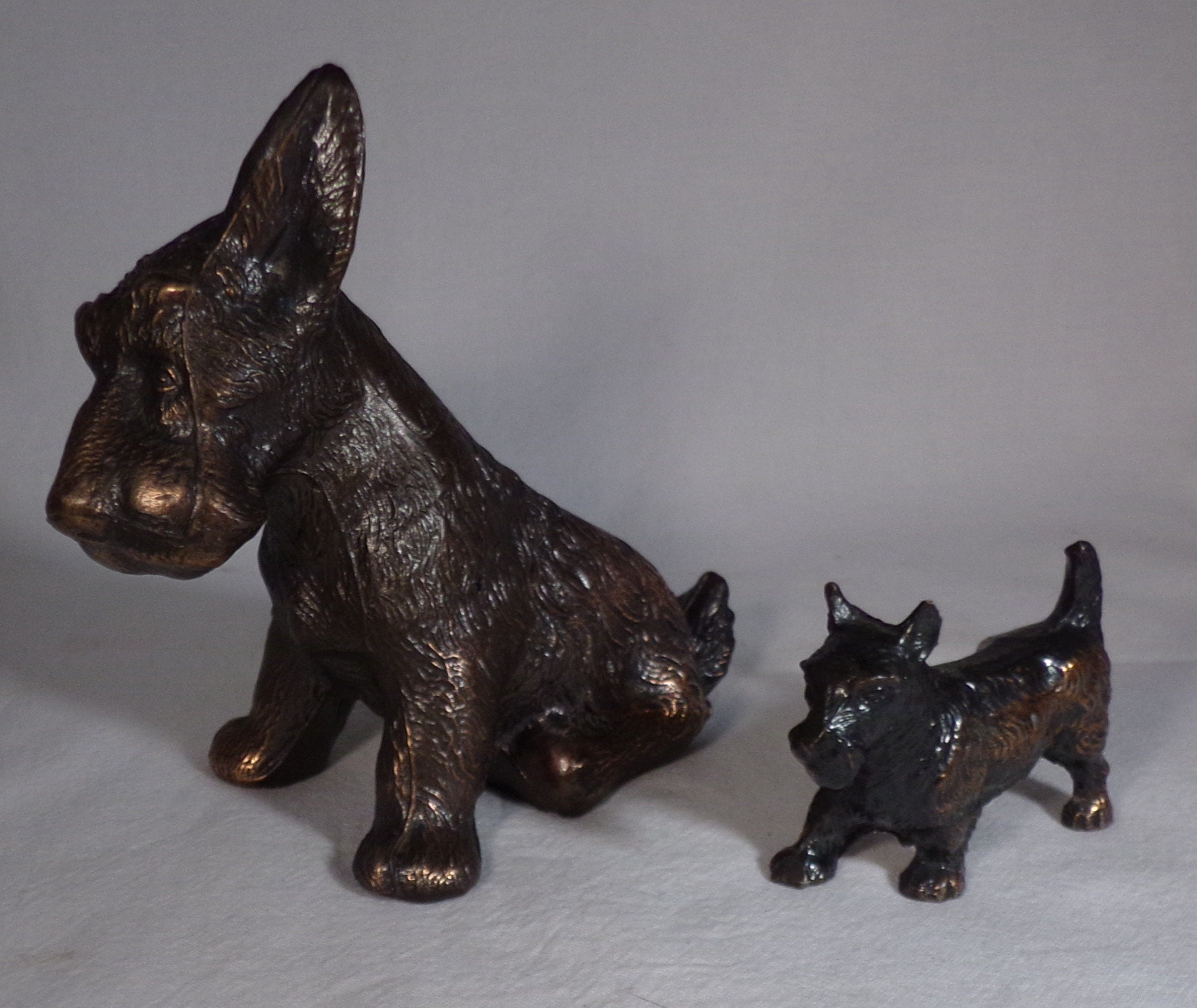 Two terrier copper colored dogs out of the 40/'s