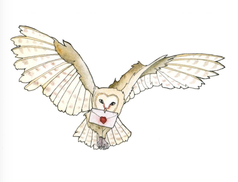 Owl Post Art Print Harry Potter Fan Art Owl Delivering ...