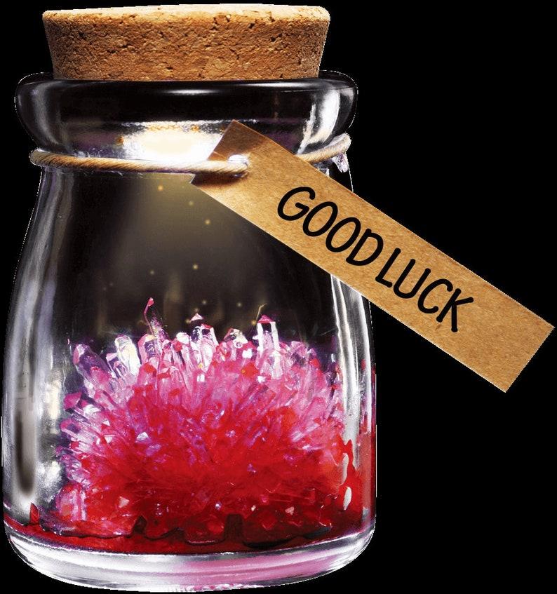 DIY Wishing Flower Crystal  DIY Gift to your dear