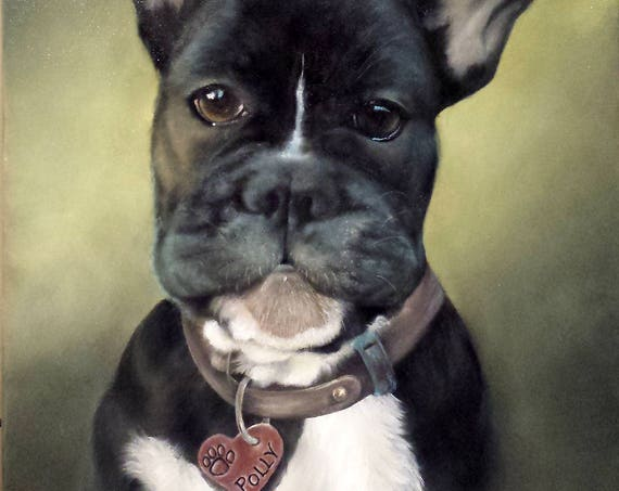 Custom Pet Portrait  Oil Painting