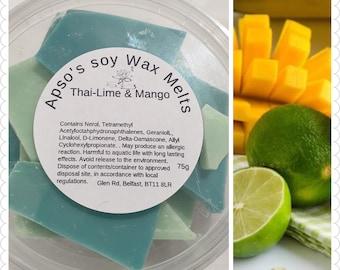 Mango wax melts | Etsy