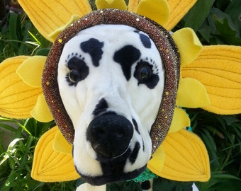 Sunflower headpiece and green leaf collar for dogs and cats