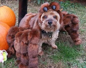 High Quality Small Tarantula Costume by Cozy Pawz