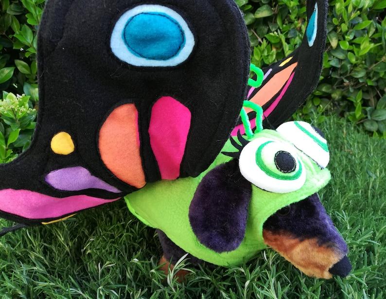 XLXXL-Party time Butterfly pet costume by TKCCOZYPAWZ