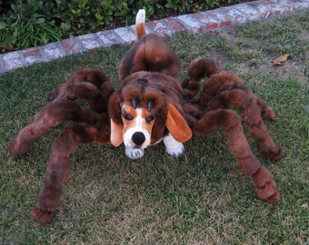 High Quality Large and X LargeTarantula Costume by Cozy Pawz