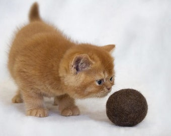 Felt Organic Catnip Ball Toy Brown set of 3 Heavy duty - felted ball - felt ball