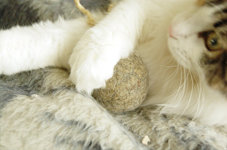Felted cat ball in cappuccino color with tail  wool ball  image 0