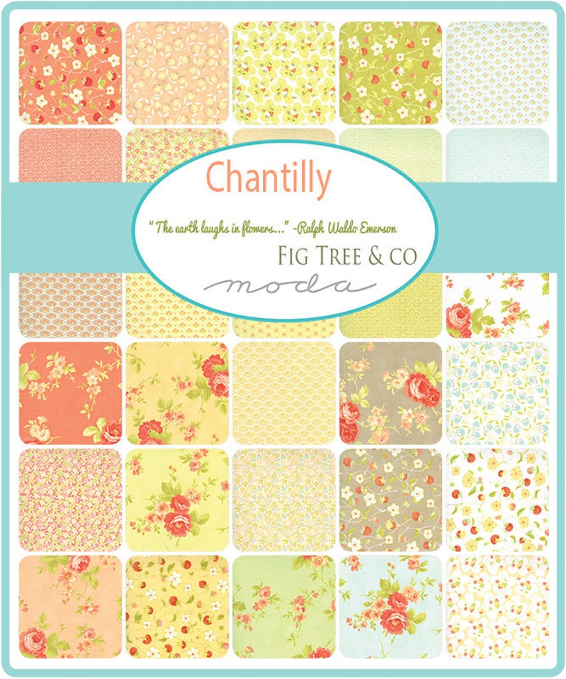 40 Piece Fat Eighth Bundle by Fig Tree Quilts for Moda Fabrics 20340F8 CHANTILLY