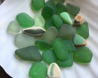 Assorted Green Beach Finds