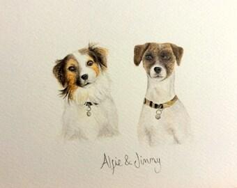 Custom Pet portraits. Watercolour painting