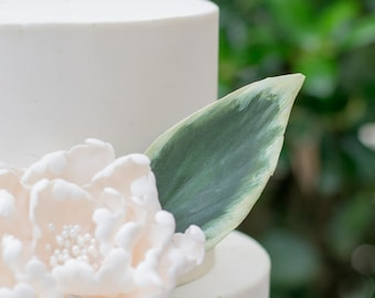 Hosta Leaf for Gumpaste and Sugar Flower Cake Toppers