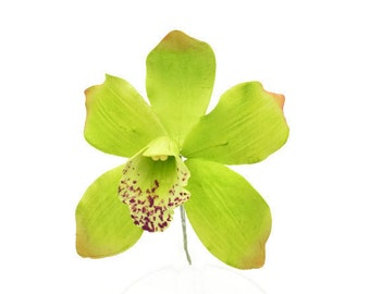 Cymbidium Orchid Sugar Flower READY TO SHIP Gumpaste flower for wedding cake toppers and cake decoration