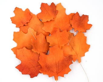 Maple Leaves, set of 10