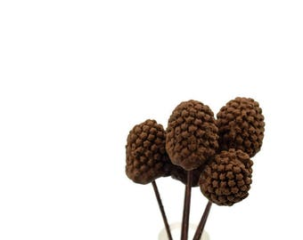 Gumpaste Pinecones set of 5 tiny pine cones Christmas Cake Topper, Winter Wedding, Unique Cake Topper, Holiday Cake Decoration