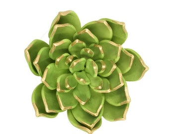 Green and Gold Succulent