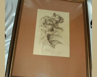 Monotone Drawing Squirrel signed Shively ( George Shively)