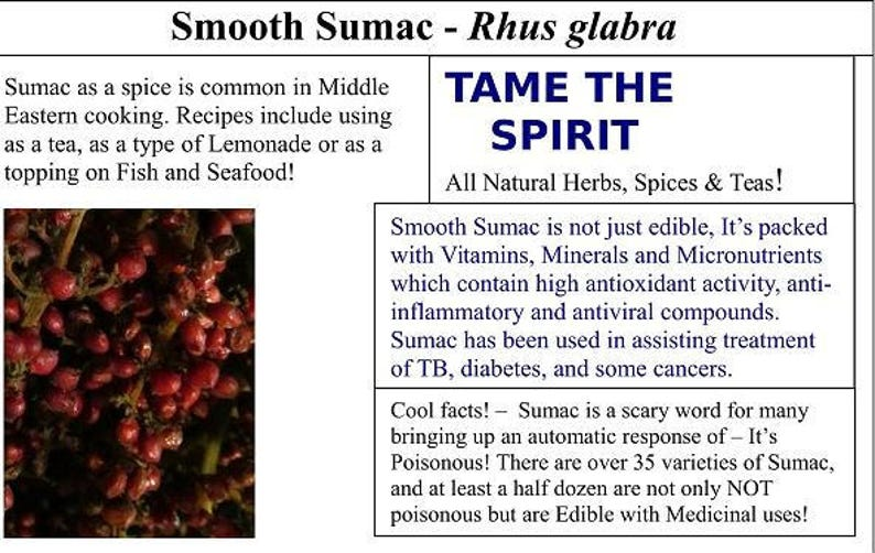Sumac Spice - Ground Berries, Wild Harvest from the Appalachian Mountains