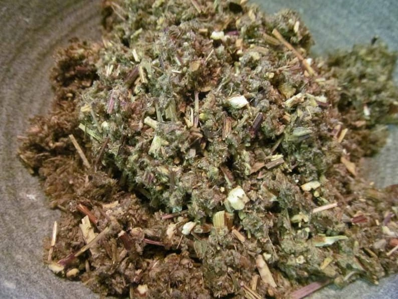 Mugwort Tea - Wild Harvest from the foothills of the Appalachian Mountains