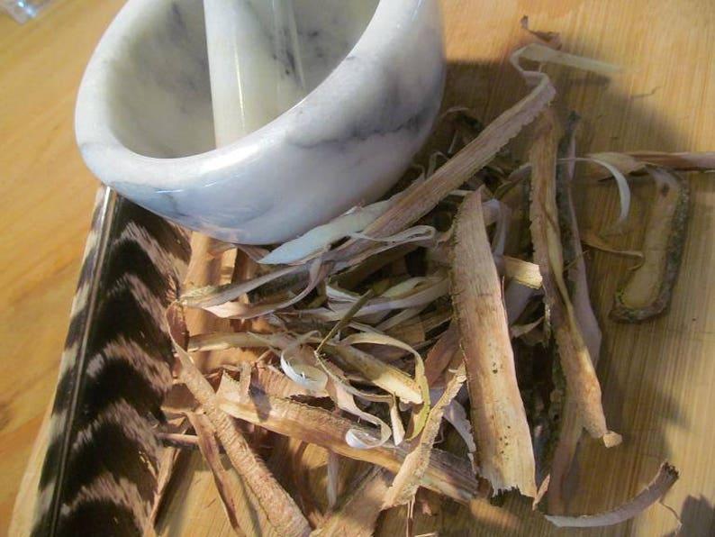 Witch Hazel Bark Wild Crafted Fresh Herbs Sun Dried Etsy